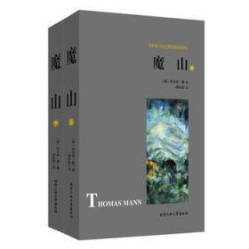 正版新书  魔山 托马斯,曼 9787563958375