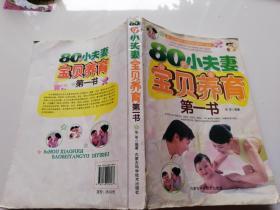 80后小夫妻宝贝养育第一书