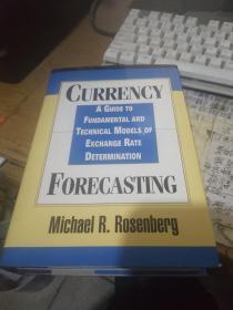 CURRENCY A GUIDE TO FUNDAMENTAL<货币交换率确定的指南和技术模型>精装本 原版