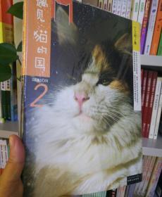 遇见·猫的国 第2季