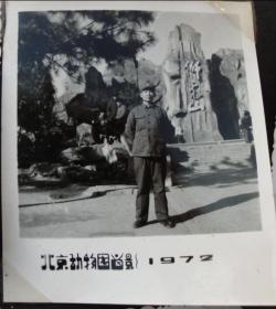 文革老照片--北京动物园留影--红收藏夹影集