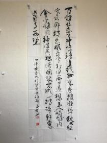 王玉兴—书法—白评蝶恋花