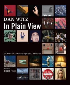 纽约工艺文化景观 Dan Witz: In Plain View