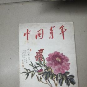 中国青年杂志1956年第19期