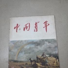 中国青年杂志1956年第21期