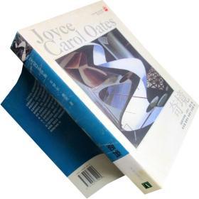 奇境 卡罗尔·奥茨 译林世界文学名著·现当代系列