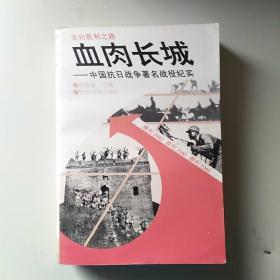 血肉长城:中国抗日战争著名战役纪实