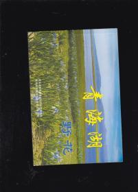 青海湖野花(图谱)