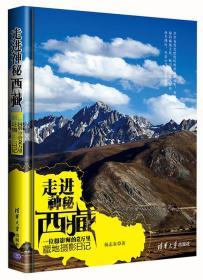 走进神秘西藏:一位摄影师的2万里藏地摄影日记