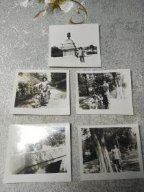 老照片五张
