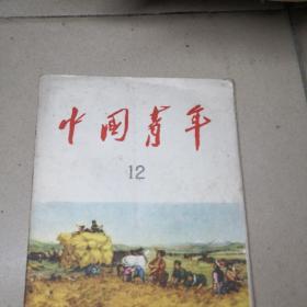 中国青年杂志1959年第12期