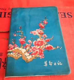 革命日记.日记本/老笔记本