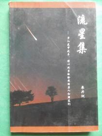 流星集 廖兴洲 著,中江文史