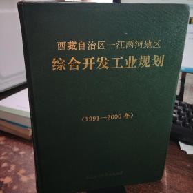 西藏自治州区一江两河综合开发工业规划