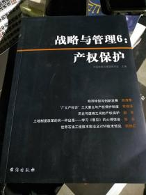战略与管理6:产权保护
