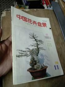 中国花卉盆景1995年 第11期.