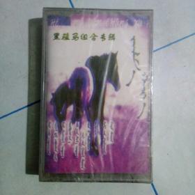 未开封蒙文磁带:黑骏马组合专辑。