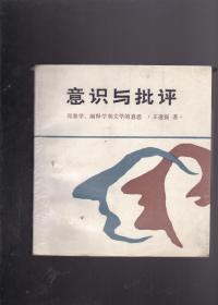 意识与批评 现象学、阐释学和文学的意思