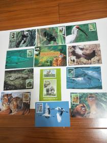 明信片。《国家重点保护野生动物(一级)》共十张。