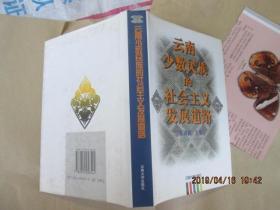 云南少数民族的社会主义发展道路