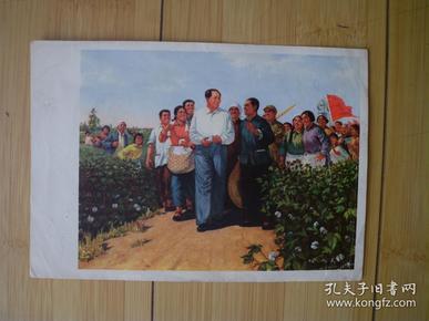 毛主席视察稻田   文革宣传画 油画 货号16