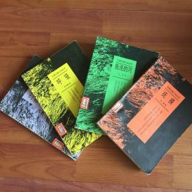 先锋长篇小说丛书:我的帝王生涯 .抚摸 .施洗河 .敌人(四册合售)馆藏