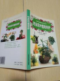 时尚观叶植物养护