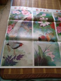 全开两张年画宣传画:珍禽异卉