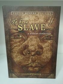 To  be a  Skave by Julius Lester (美国黑人研究)英文原版书
