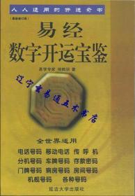 《易经数字开运宝鉴》易学专家 杨鹤朋著32开256页