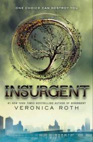 Insurgent (Divergent Trilogy #2)反叛者 分歧者系列第二部 英文原版