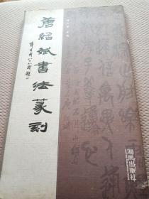 唐绍斌书法篆刻