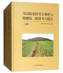正版邙山陵墓群考古调查与勘测第一阶段考古报告(上、下册)  文物出版社