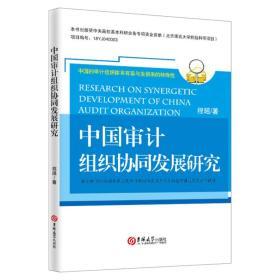 中国审计组织协同发展研究
