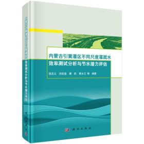 内蒙古引黄灌区不同尺度灌溉水效率测试分析与节水潜力评估