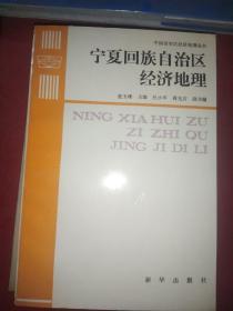 宁夏回族自治区经济地理