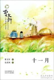 麦场主系列  曹文轩小说阅读与鉴赏  十一月