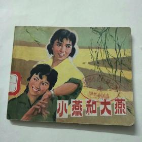 小燕和大燕(电影连环画册)