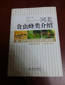 河北食虫蜂类介绍