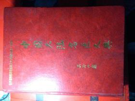 -----中国大陆名医大典2(中国卷)精装 1020页 。品如图