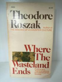 Where the Wasteland Ends:Politics and Transcendence in Postindustrial Society by  Theodore Roszak (社会学)英文原版书