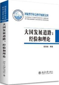 大国发展道路:经验和理论  9787301294024