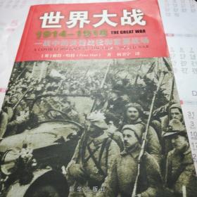 世界大战1914-1918:一战中的关键战役和重要战场