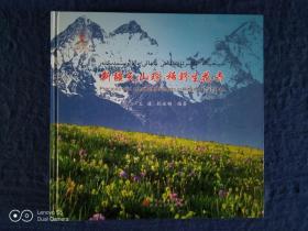 《新疆天山珍稀野生花卉:中文、英文、哈萨克文》(可提供发票)