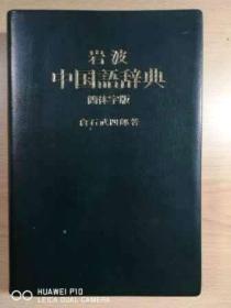 岩波中国语辞典(简体字版)