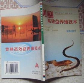 黄鳝高效益养殖技术
