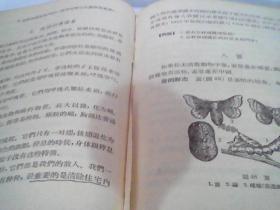 五十年代版   动物学