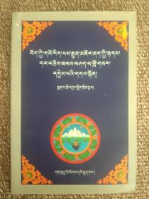 藏医诊治各种常见病    藏文版