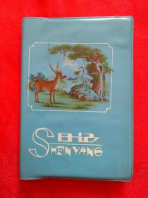 70年代老塑料日记本    SHENYANG  日记