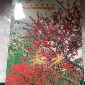 中国蔬菜之乡:寿光